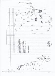 strona 0017